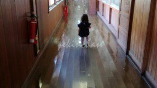 質美小学校