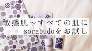 オーガニック化粧品sorabudo